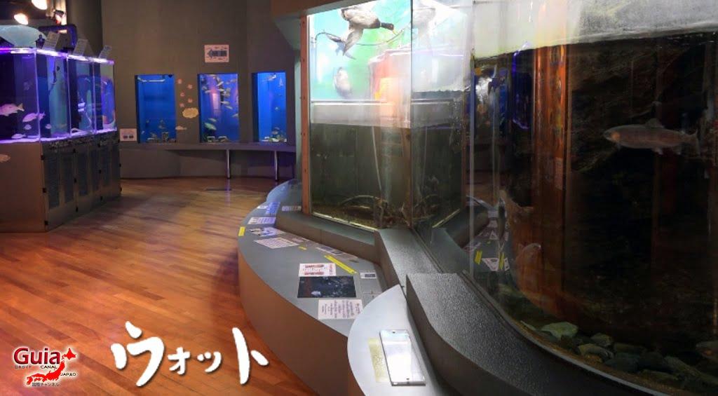 Otto ォ ッ ト - Ulotto Aquarium 2