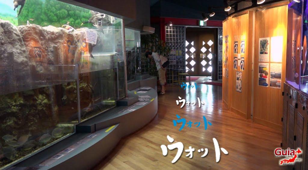 Otto ォ ッ ト - Ulotto Aquarium 3