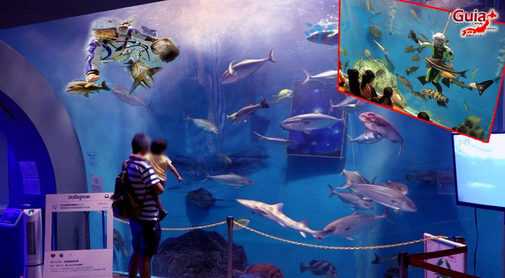 Otto ォ ッ ト - Ulotto Aquarium 9