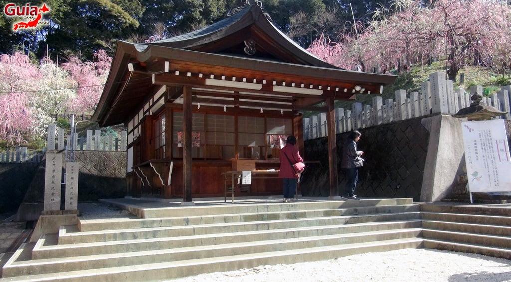 Vagina Festival - Hounen Matsuri 47