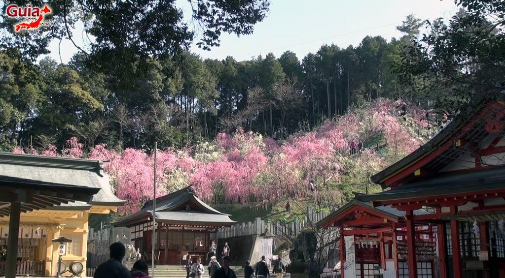 Vagina Festival - Hounen Matsuri 51