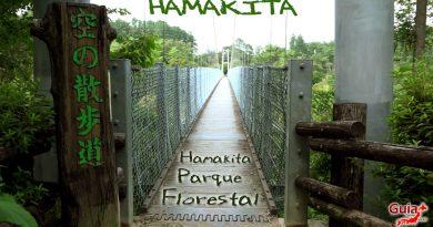하마 키타 삼림 공원-하마 마츠 55