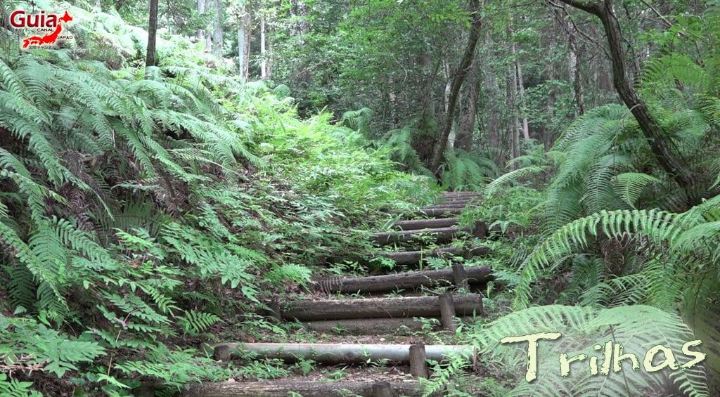 Hamakita Parque Florestal - Hamamatsu 6