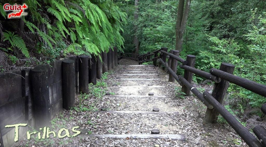 Hamakita Parque Florestal - Hamamatsu 8