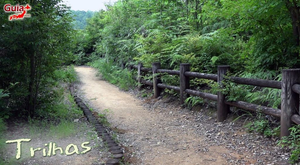 Hamakita Forest Park - Hamamatsu 9