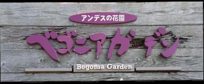 Nabana no Sato - Parque de flores 2