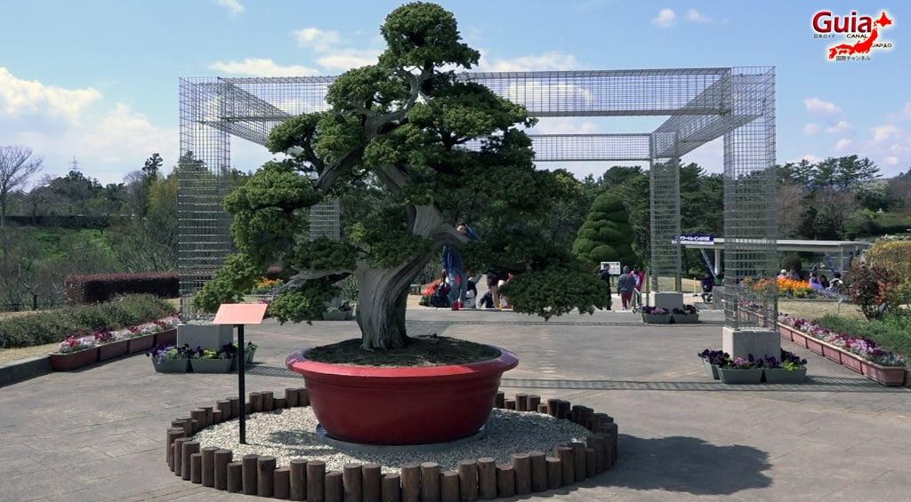 Parque de flores Hamamatsu - Parque de flores 47