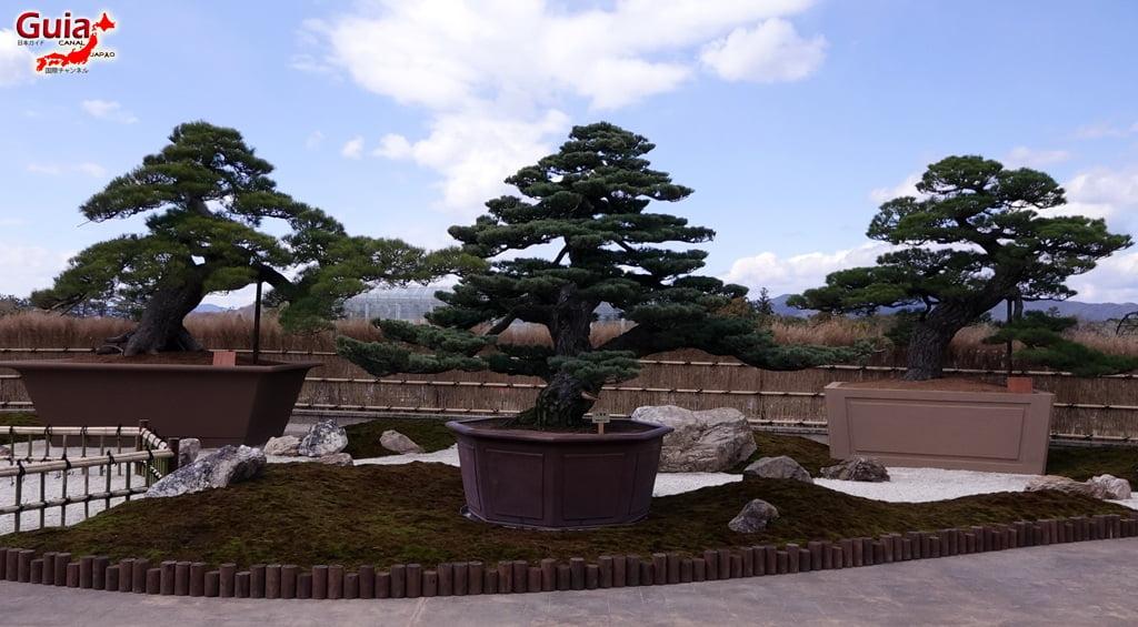 Parque de flores Hamamatsu - Parque de flores 49