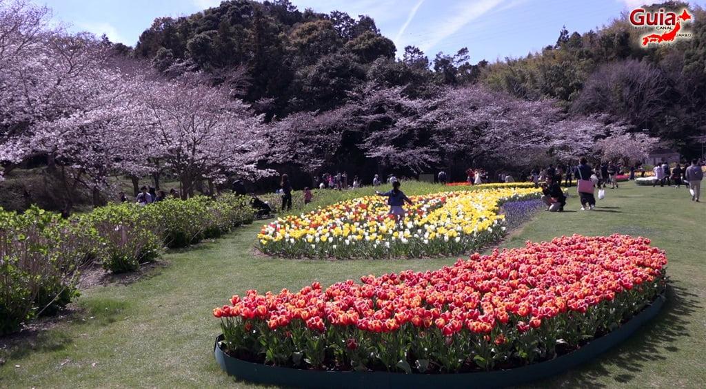 Parque de flores Hamamatsu - Parque de flores 53