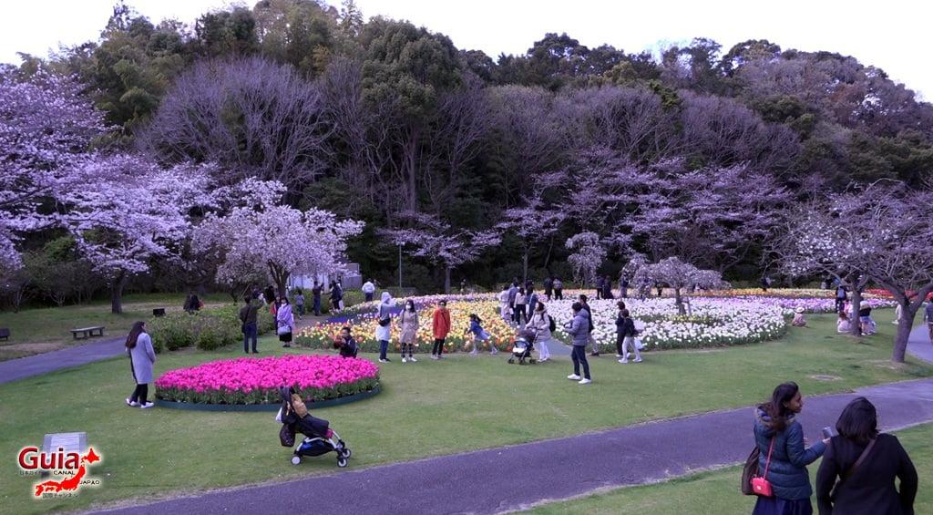 Parque de flores Hamamatsu - Parque de flores 58