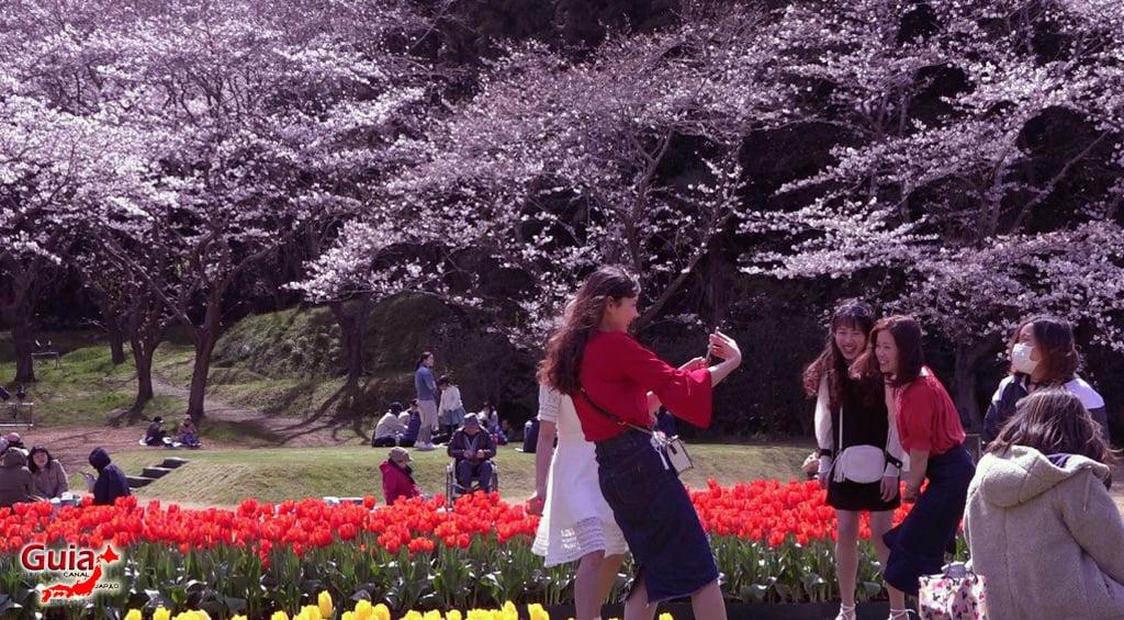 Parque de flores Hamamatsu - Parque de flores 59