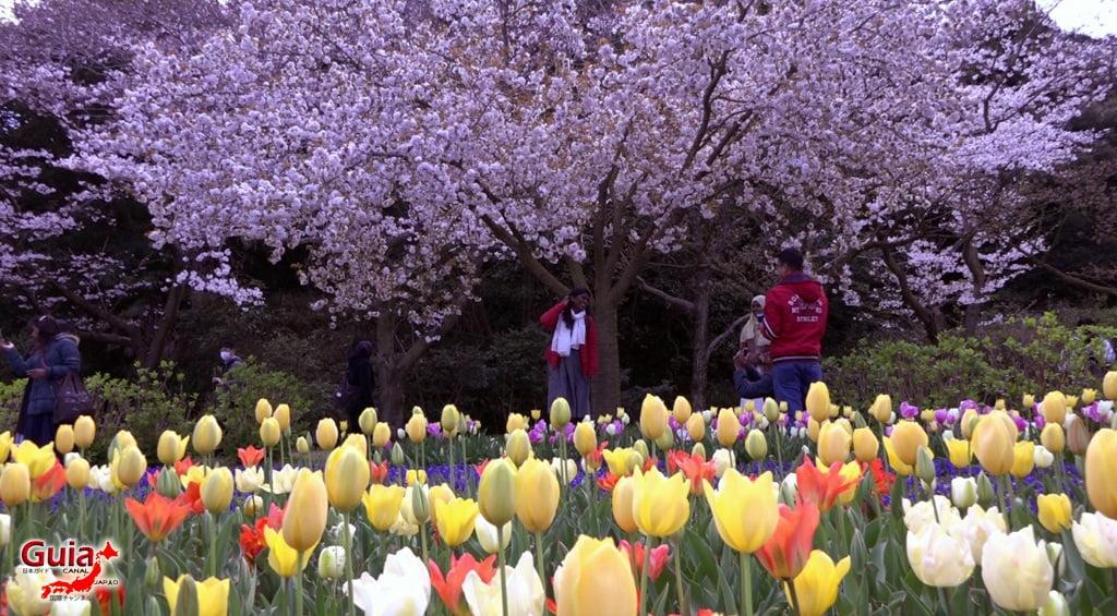 Parque de flores Hamamatsu - Parque de flores 63