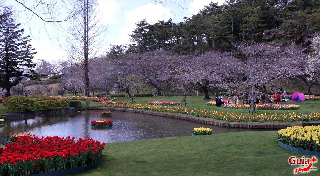 Parque de flores Hamamatsu - Parque de flores 67