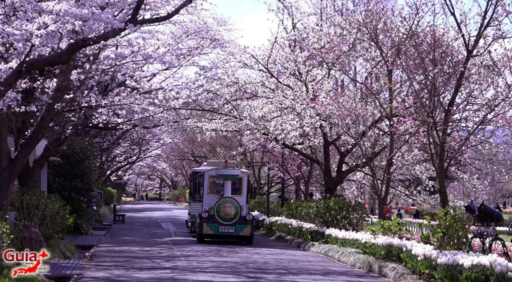 Parque de flores Hamamatsu - Parque de flores 70