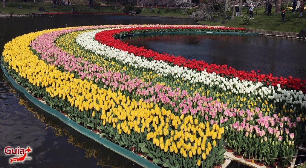 Parque de flores Hamamatsu - Parque de flores 71