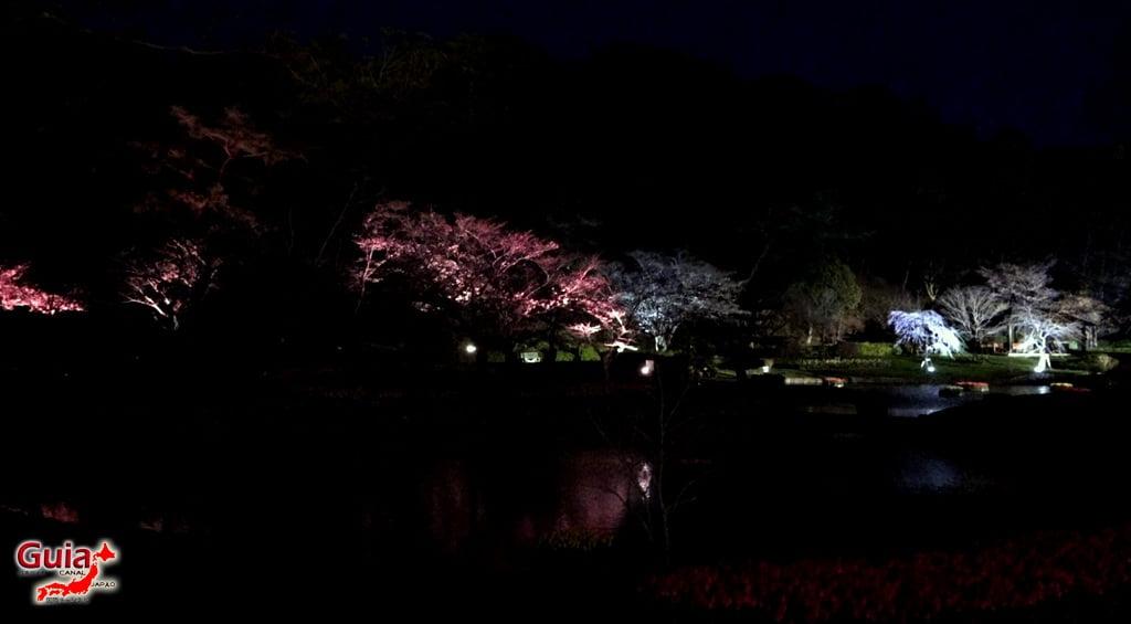 Parque de flores Hamamatsu - Parque de flores 83