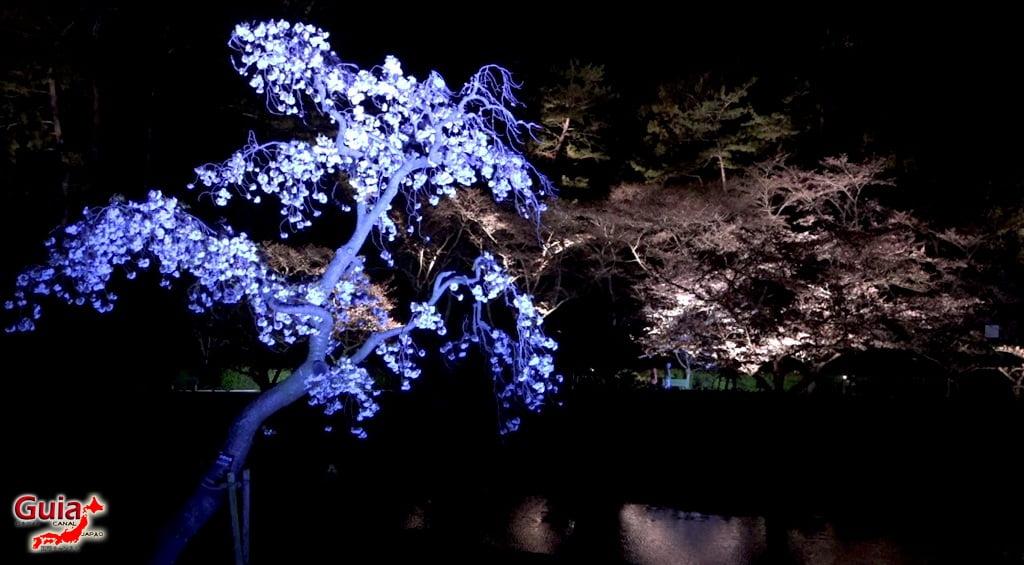 Parque de flores Hamamatsu - Parque de flores 86