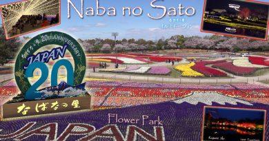 나바 나노 사토-플라워 파크 54