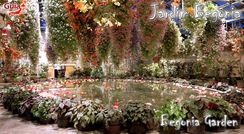 Nabana no Sato - Parque de flores 81