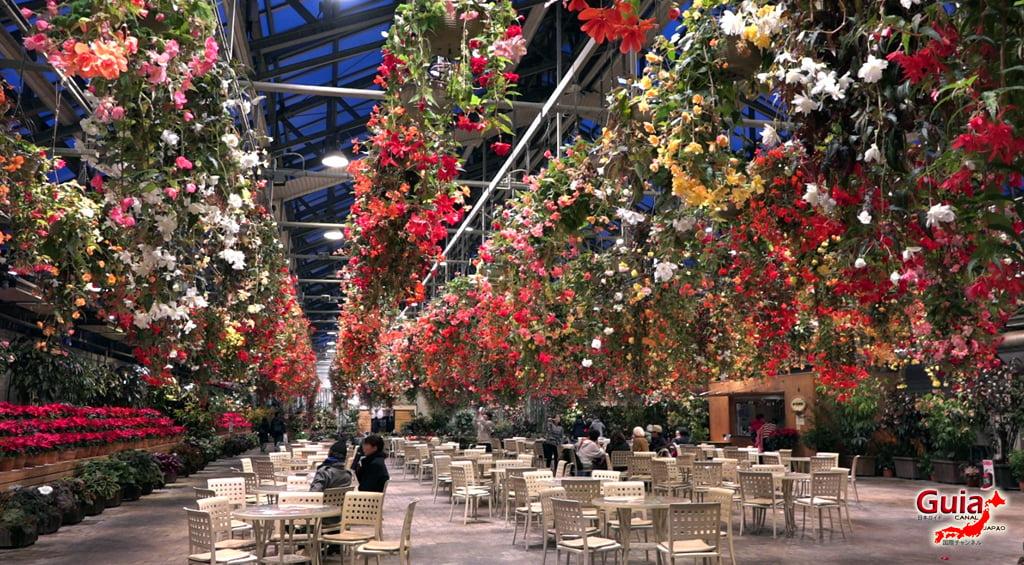 Nabana no Sato - Parque de flores 84