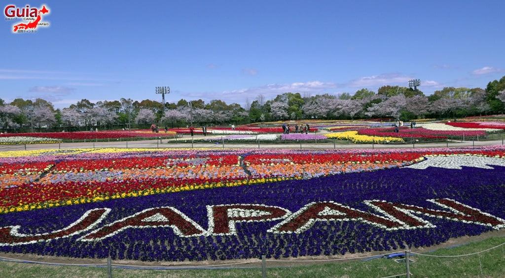 Nabana no Sato - Parque de flores 3