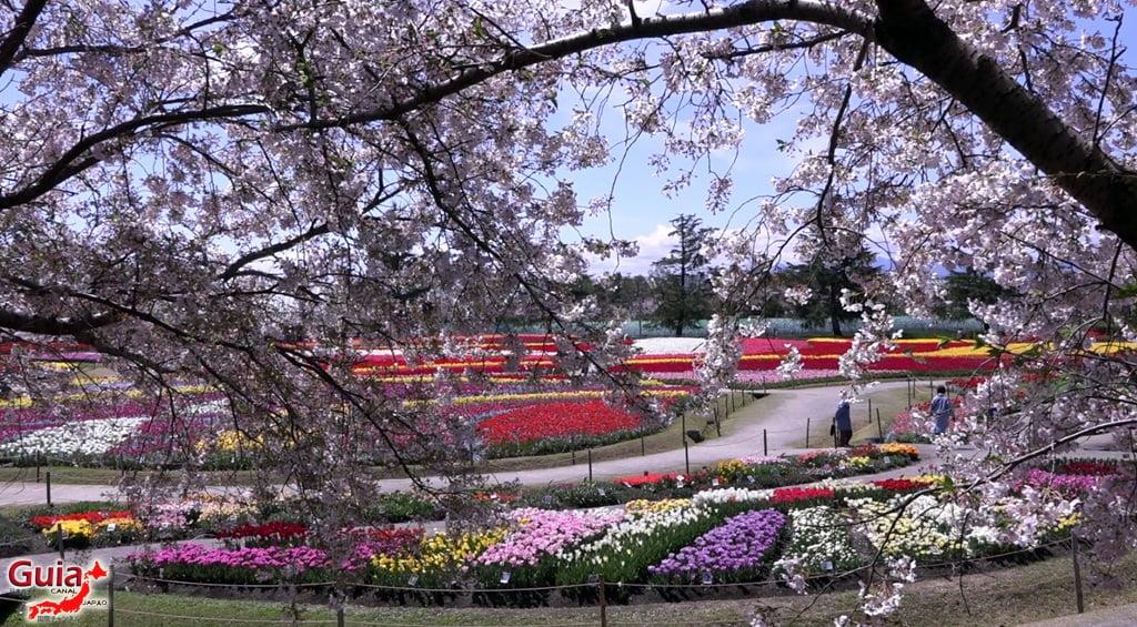 Nabana no Sato - Parque de flores 17