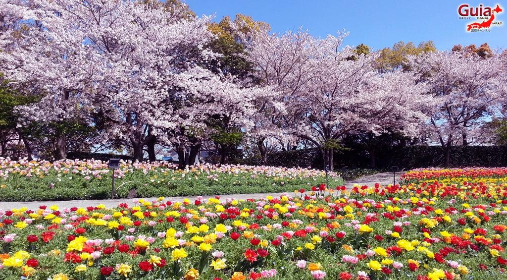 Nabana no Sato - Parque de flores 21
