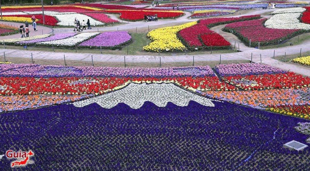 Nabana no Sato - Parque de flores 4