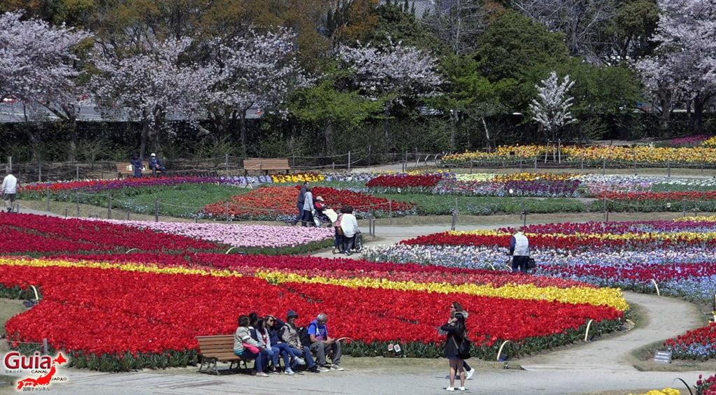 Nabana no Sato - Parque de flores 9