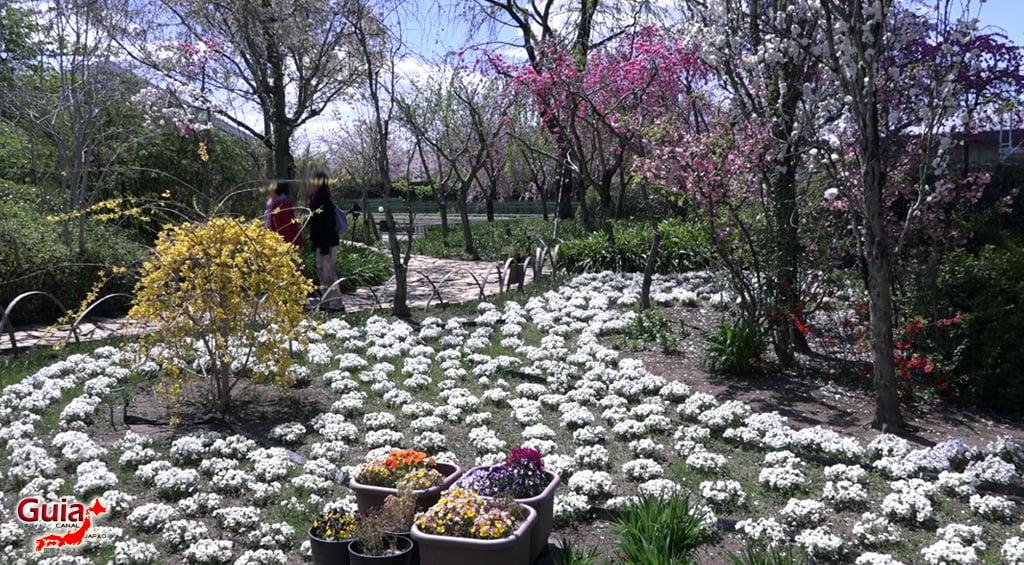 Nabana no Sato - Parque de flores 27
