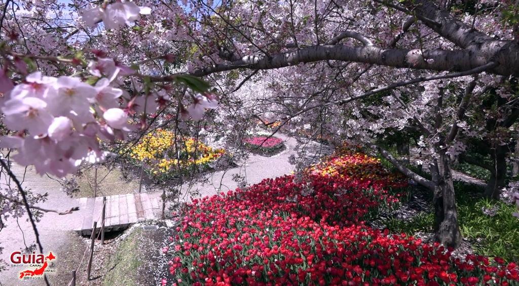 Nabana no Sato - Parque de flores 32