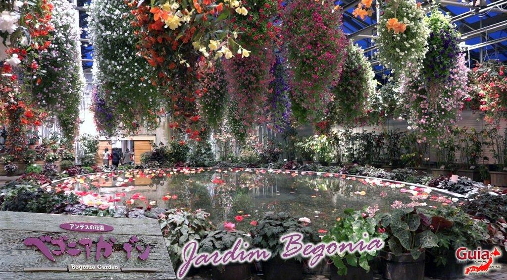 Nabana no Sato - Parque de flores 33