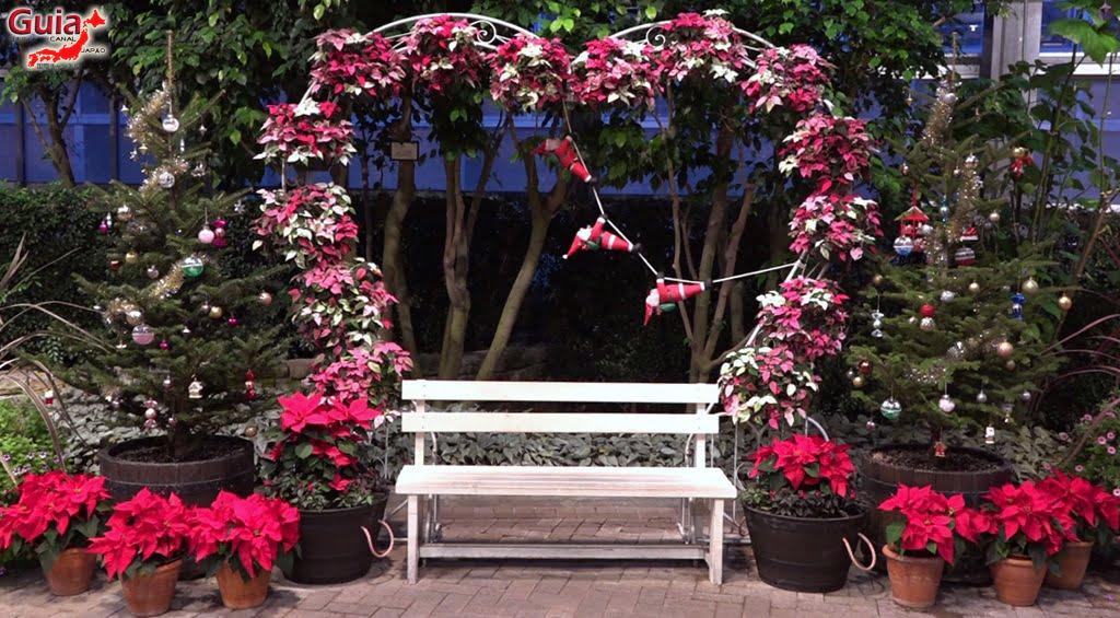 Nabana no Sato - Parque de flores 43