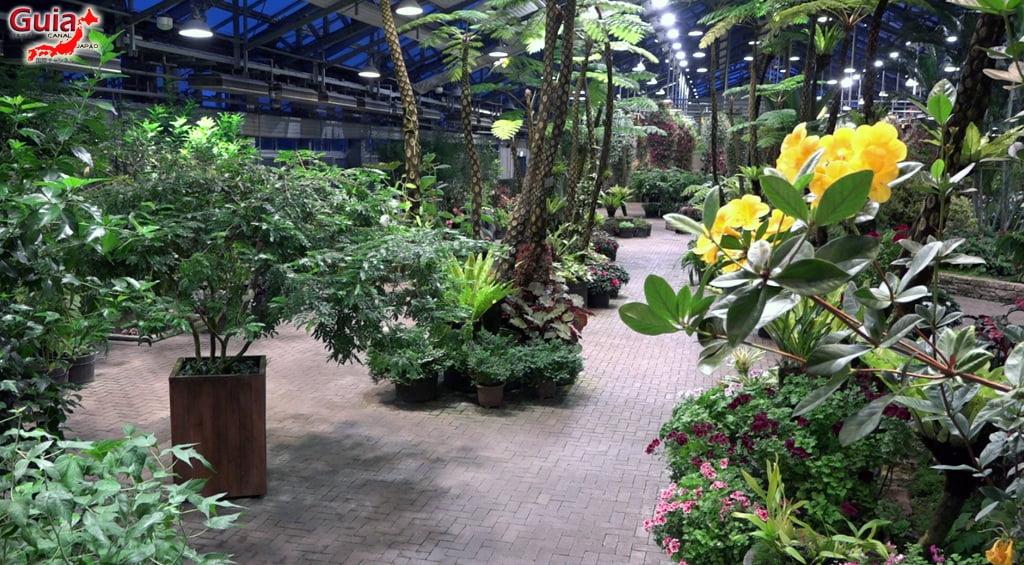 Nabana no Sato - Parque de flores 40