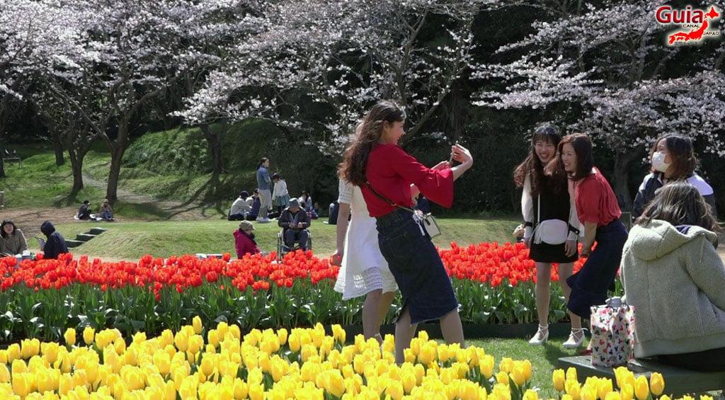 Parque de flores Hamamatsu - Galería de fotos 12