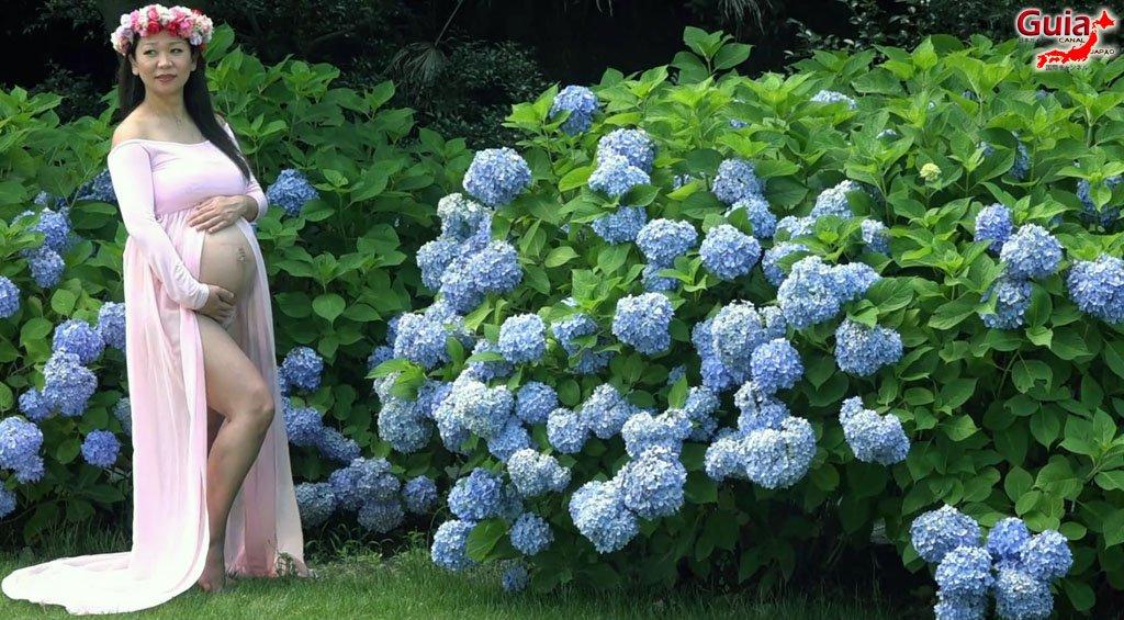 Parque de flores Hamamatsu - Galería de fotos 13