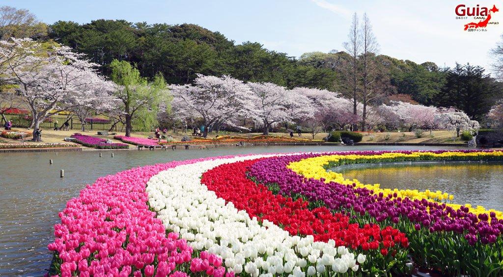 Parque de flores Hamamatsu - Galería de fotos 14