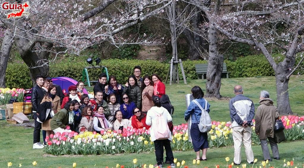 Parque de flores Hamamatsu - Galería de fotos 19