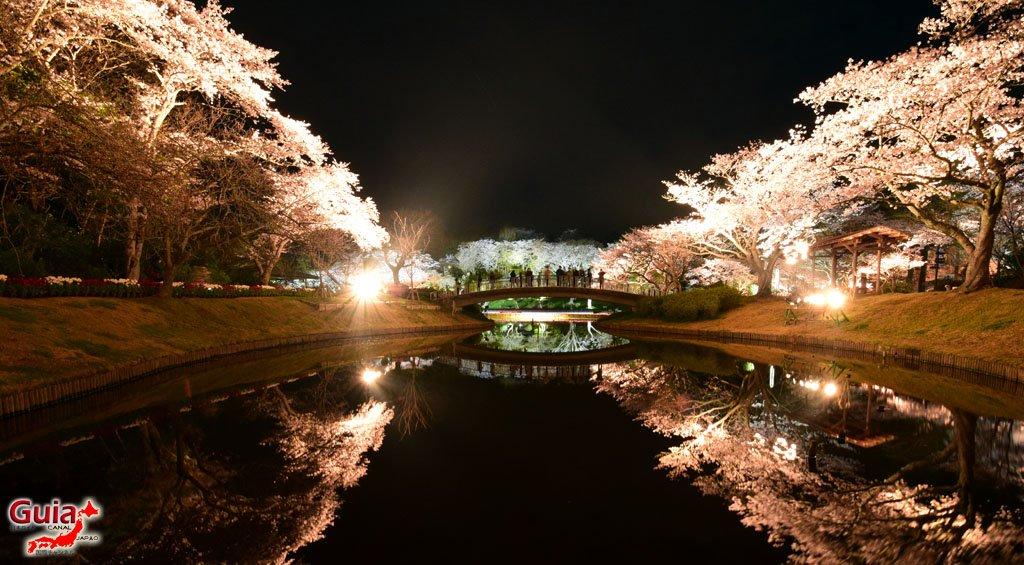 Parque de flores Hamamatsu - Galería de fotos 27