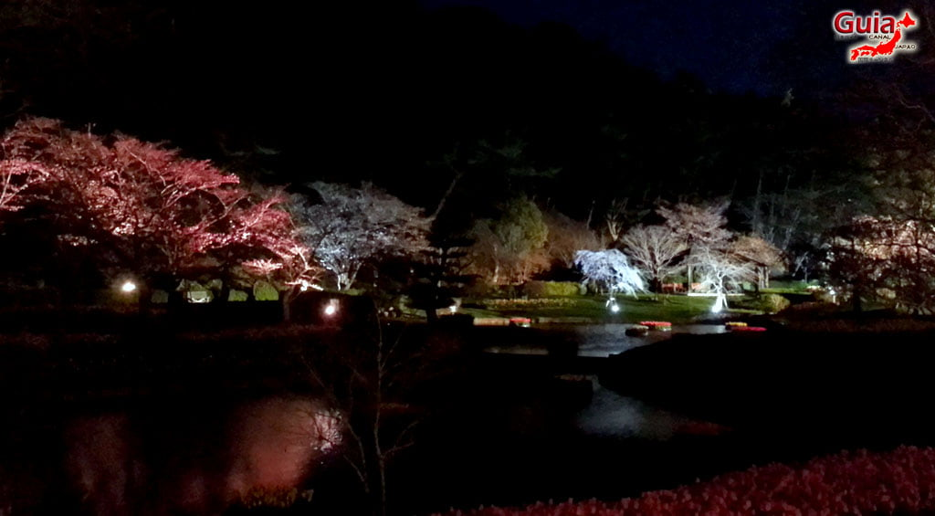Parque de flores Hamamatsu - Galería de fotos 28