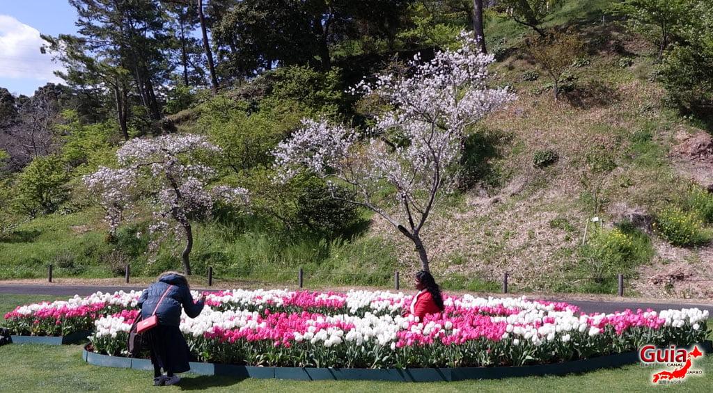 Parque de flores Hamamatsu - Galería de fotos 5