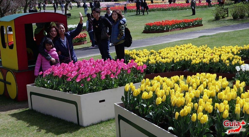 Parque de flores Hamamatsu - Galería de fotos 6