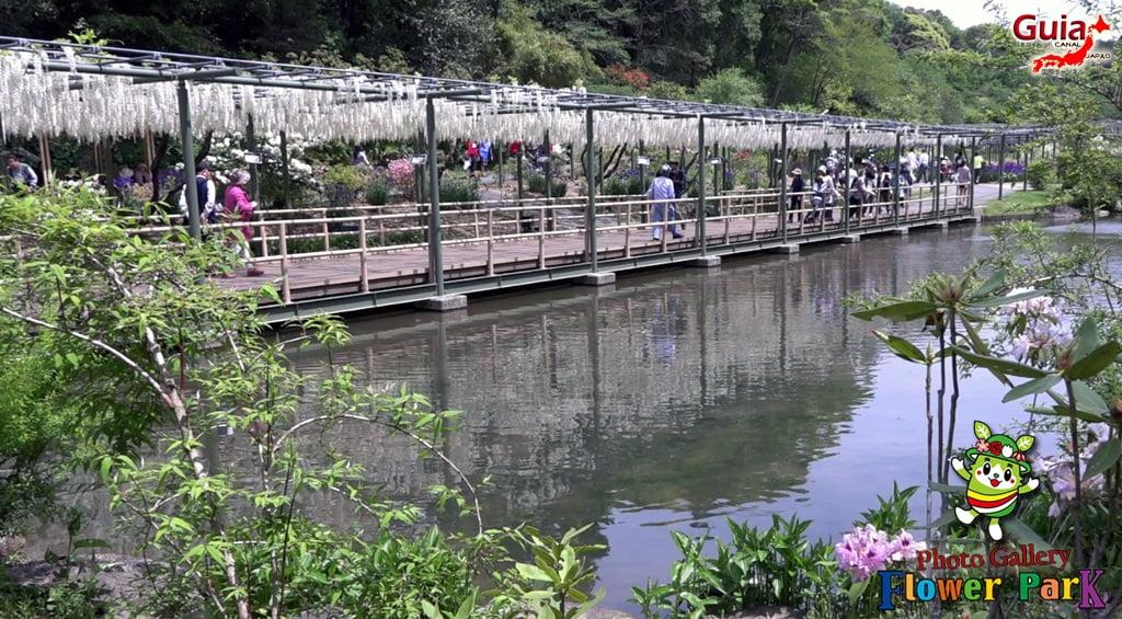 Parque de flores Hamamatsu - Galería de fotos 51