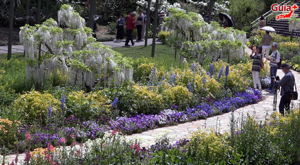 Parque de flores Hamamatsu - Parque de flores 97