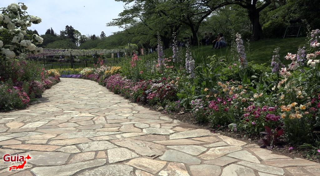 Parque de flores Hamamatsu - Parque de flores 101