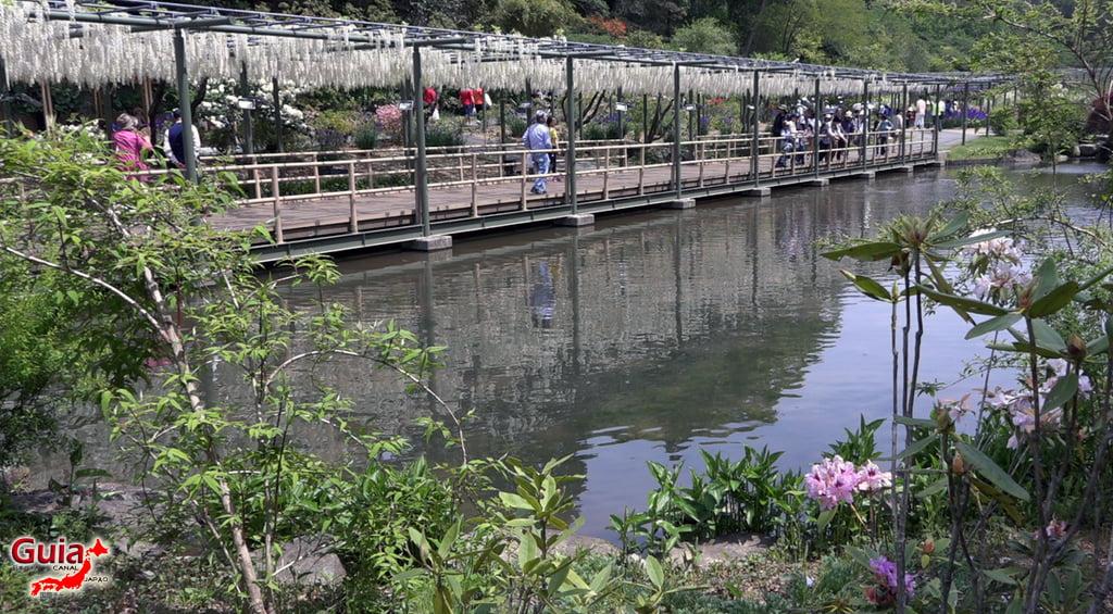 Parque de flores Hamamatsu - Parque de flores 111