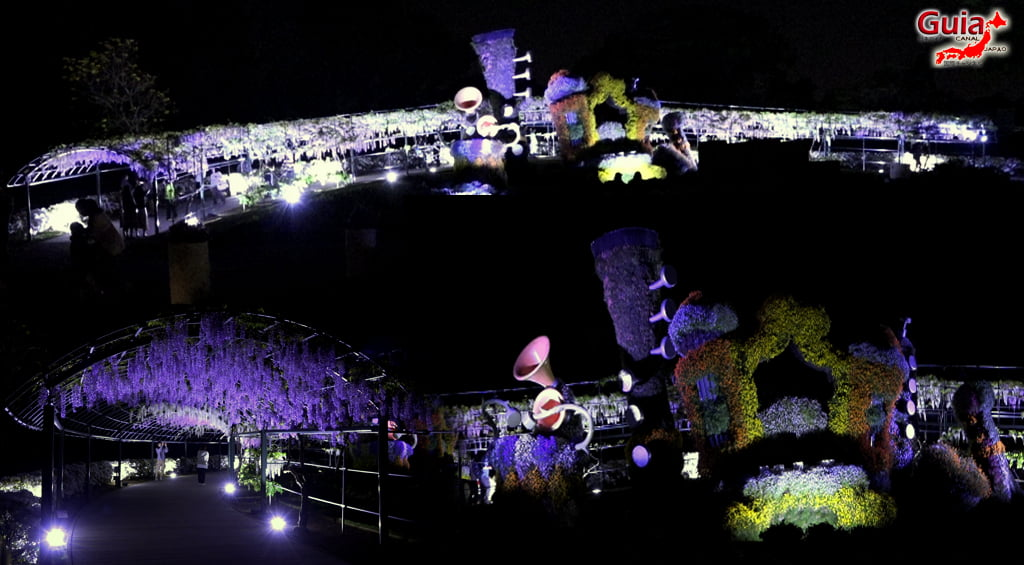 Parque de flores Hamamatsu - Parque de flores 130