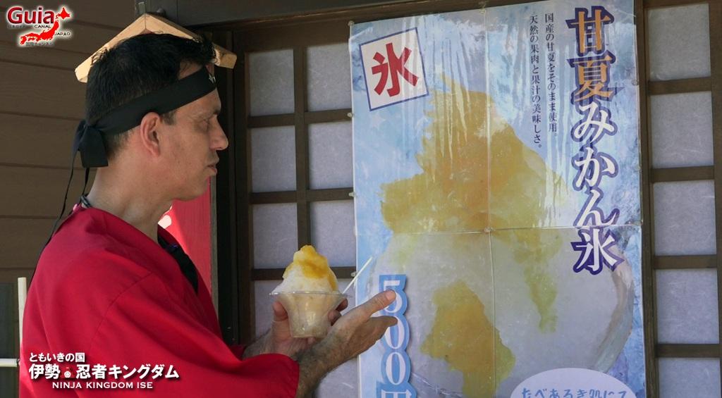 Ise Ninja Kingdom 45