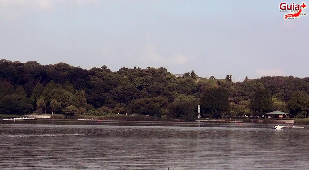 Lago Sanaru Parque de Hamamatsu 23