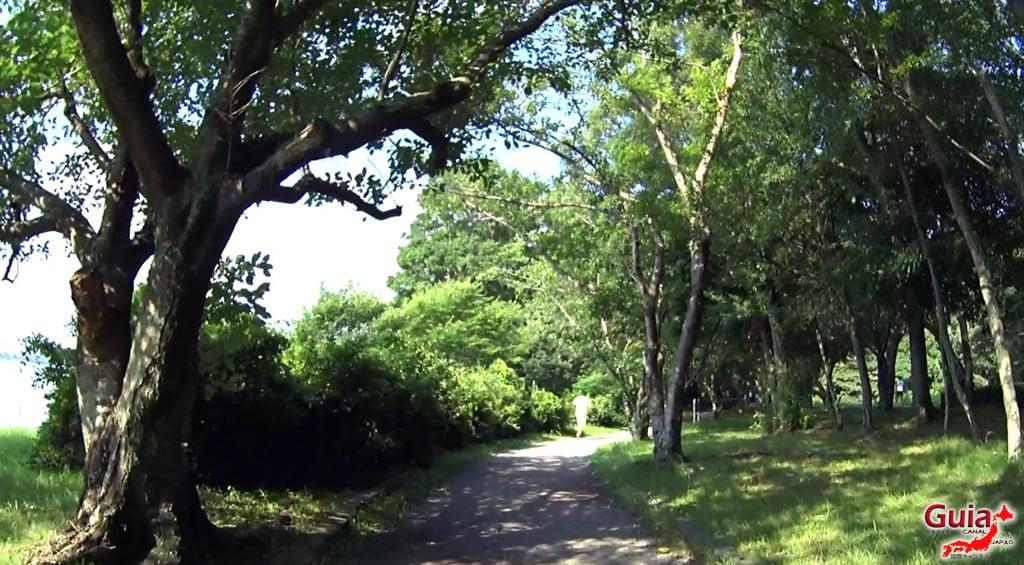 Lago Sanaru Parque de Hamamatsu 24